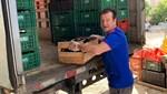 Dunga'dan Brezilya'da 10 ton gıda yardımı